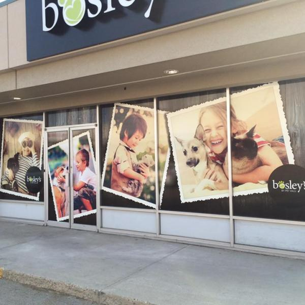 Bosley's Window Wrap